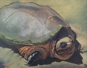 Old Snapper, Gloucester, MA oil on canvas